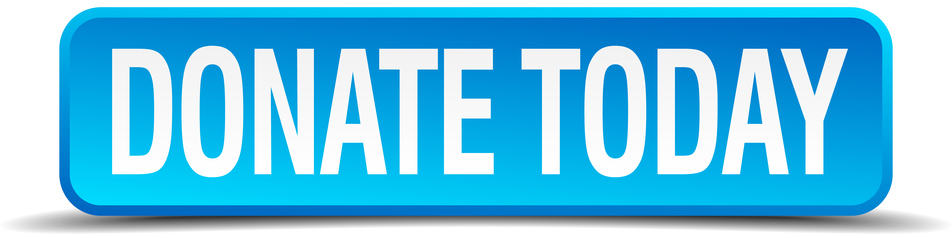 rectangular blue button with Donate Today in white letters